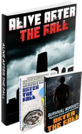 Alive After The Fall 2 e-Book