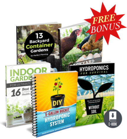 The Hydroponic Garden Secret pdf