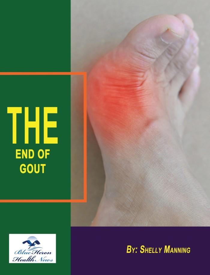 End of Gout Program