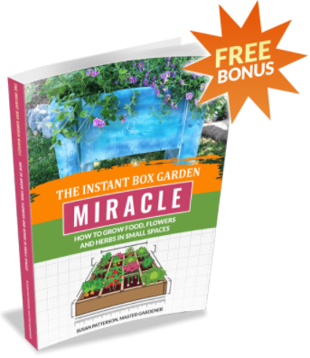 The Instant Box Garden Miracle Bonus