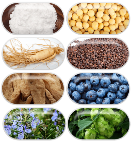 Triple Cognigen Plus Ingredients