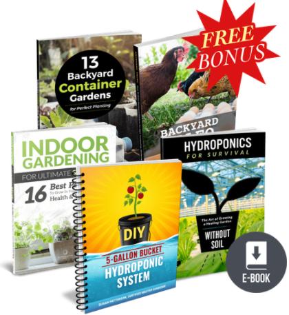 The Indoor Garden Secret book