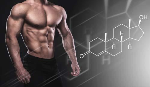 H-66 Hormone Support Formula Pills